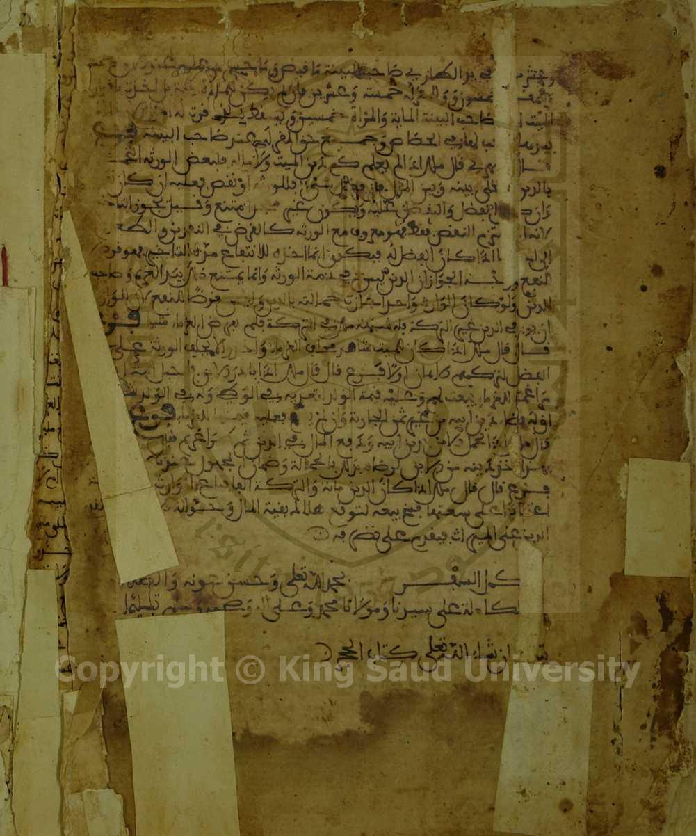 Manuscripts > Book in Maliki Fiqh > Page No > 197
